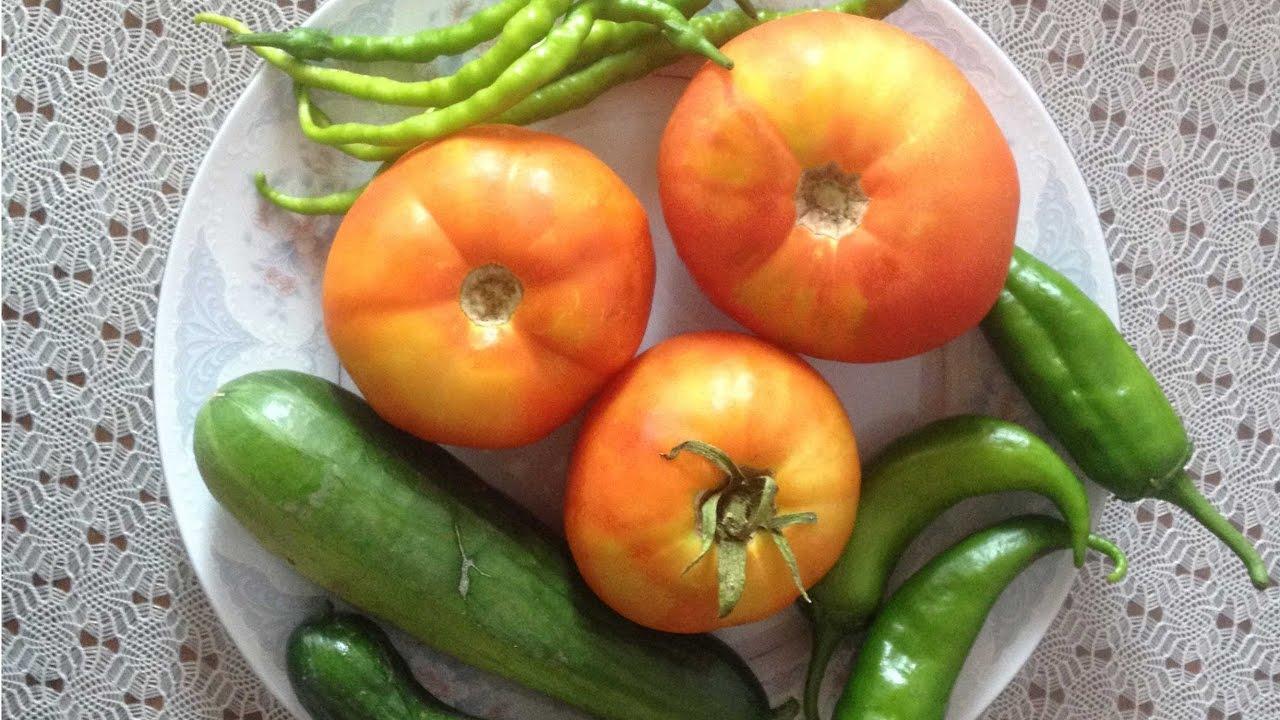 Nasıl ve ne zaman salatalık ve biber fideleri dikmek