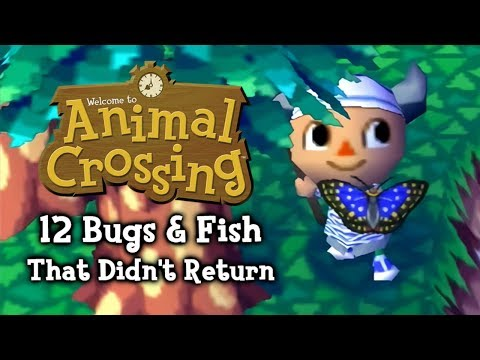 Animal Crossing - 12 Bugs & Fish That Didn't Return