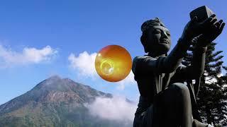 LA MENTE QUE BUSCA AL BUDA - BUDISMO ZEN