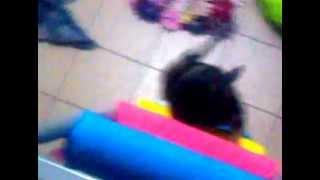 Frida subiendo a la cucheta