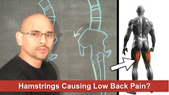 Atlanta Chiropractor - Hamstring Stretches to Relieve Lower Back Pain? - Personal Injury Doctor