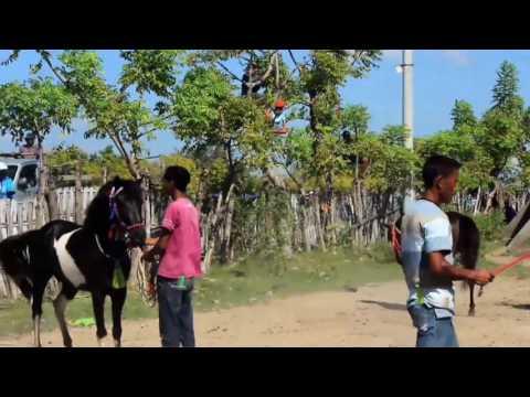 Pacuan Kuda   Budaya Sumbawa Besar