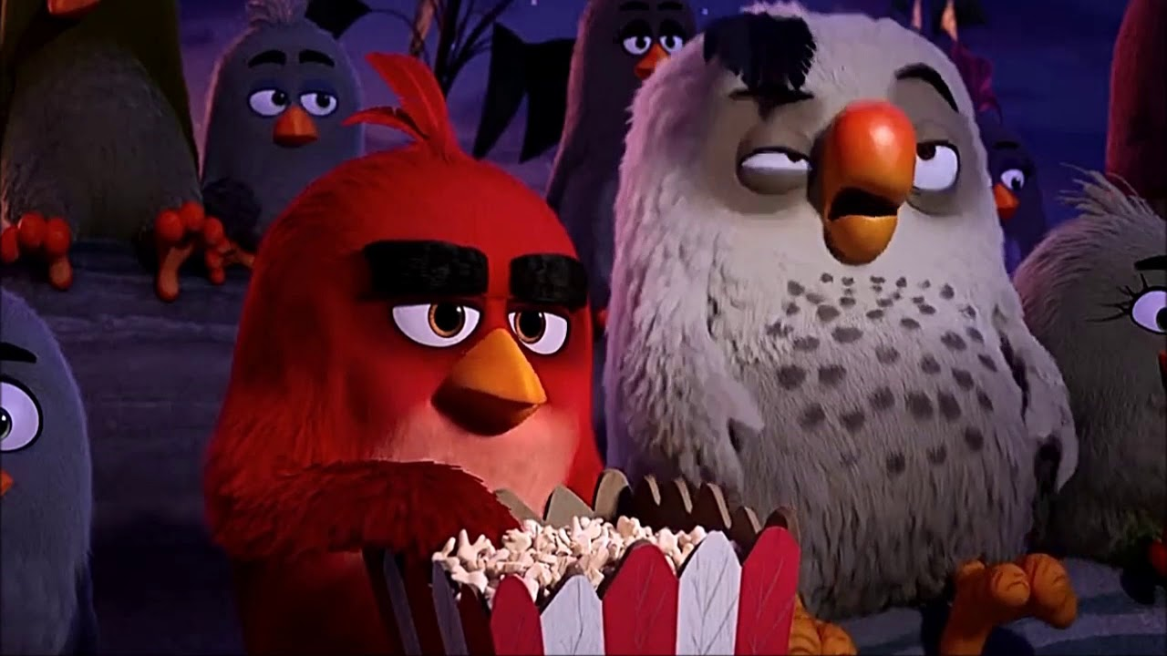 the angry birds movie 2016 scene red opening titles