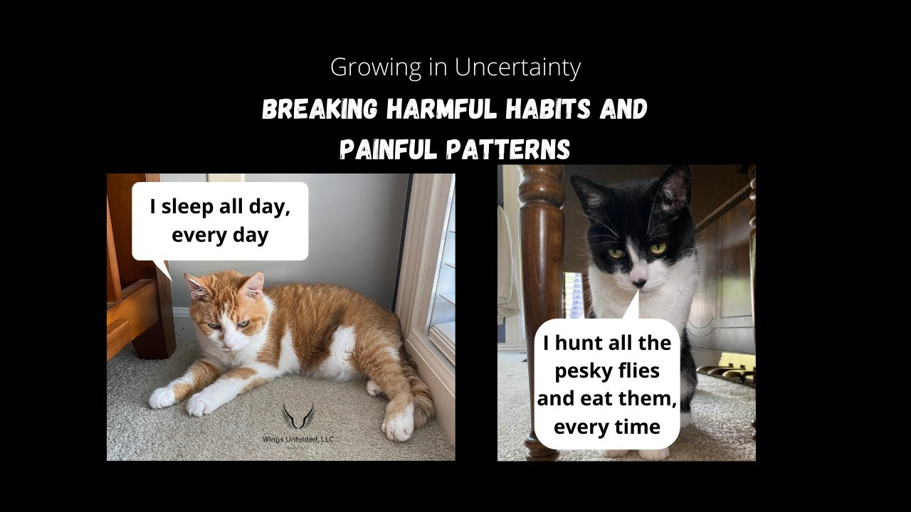 Breaking Harmful Habits and Painful Patterns