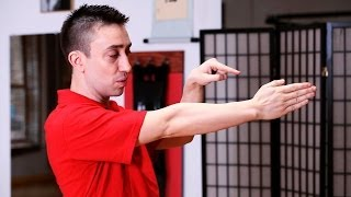 How to Do the Saam Bai Tze | Wing Chun