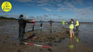 Archaeologists Hunting WWII Relics Accidentally Unearthed An Incredible 16th century Shipwreck