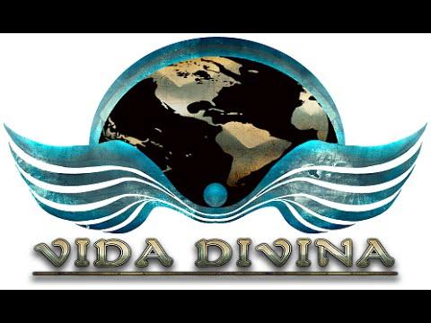 Vida Divina Official Compensation Plan 2016
