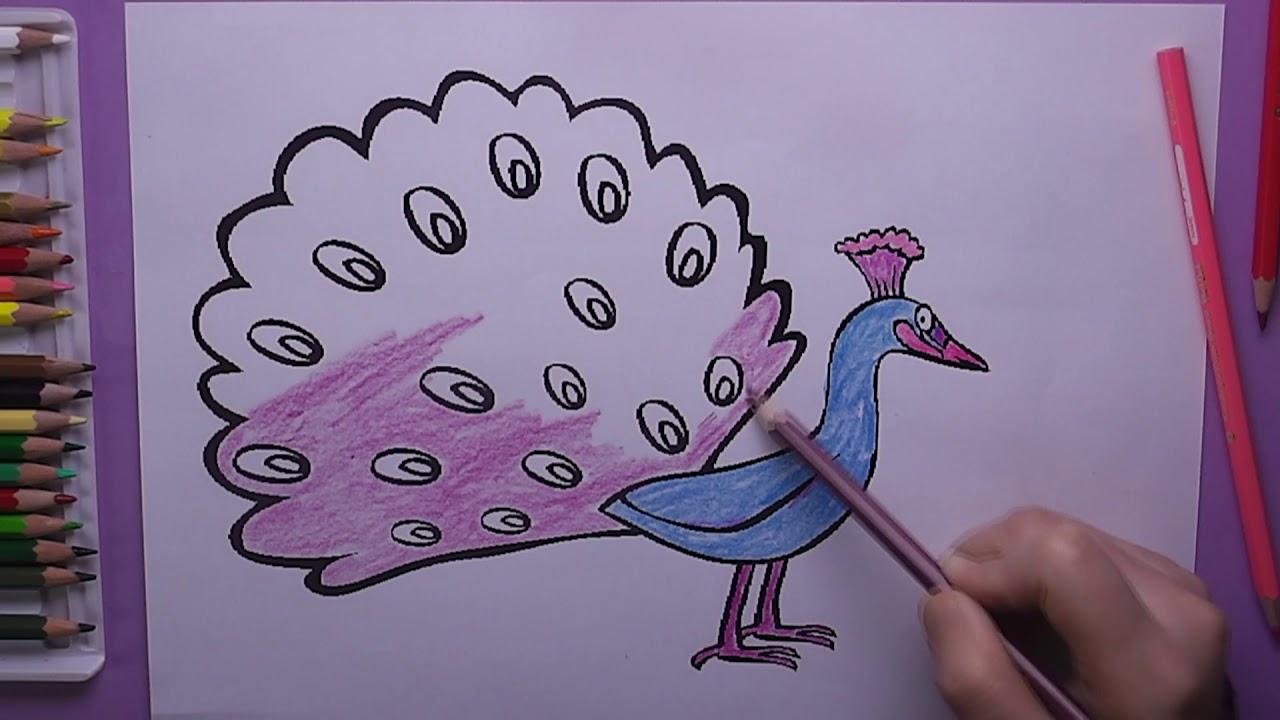 Tavus Kuşu Boyama Tavus Kuşu Nasıl Boyanır Coloring Peacock Youtube