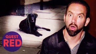 Nick Tries To Befriend The Ghost Of A Dog Called Bruce | Paranormal Lockdown UK