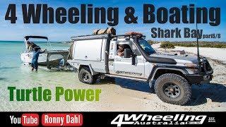 4 Wheeling & Boating Shark Bay, part 6/8 Turtle Power