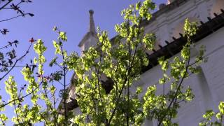 Колокольный звон в Троице-Сергиевой Лавре(Съемка и подготовка видео - студия