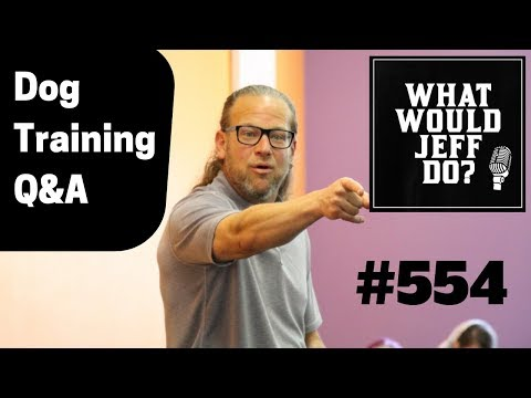 Dog Training - Leash Reactive Dog - Puppy Training - What Would Jeff Do? Q&A #554 (2019)