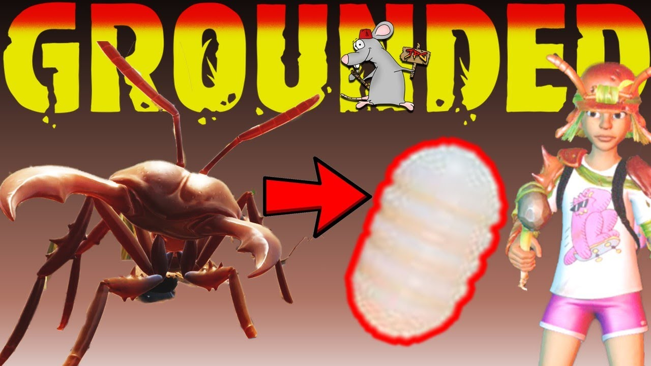 Grounded Guide - How To Get Ant Eggs! Why Do They Go Missing?