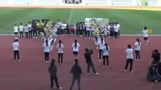 金文泰中學 2015-2016年度陸運會 啦啦隊比賽 行社
