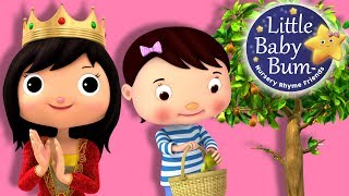 Learn with Little Baby Bum | I Had a Little Nut Tree | Nursery Rhymes for Babies | Songs for Kids
