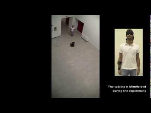 Cooperative human-robot haptic navigation