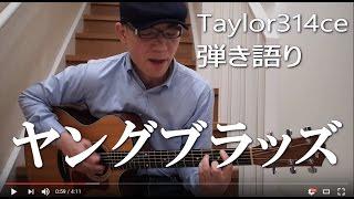 ヤングブラッズ 弾き語り 佐野元春 Cover Taylor314ce 作詞作曲 佐野元春.