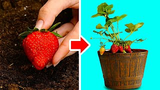45 GARDENING HACKS THAT WILL BLOW YOUR MIND