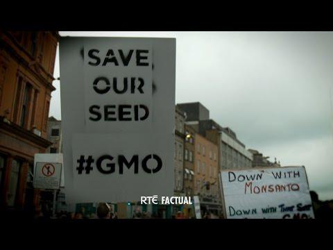 Eco Eye 13 - Ep 4: 'GMOs'