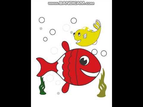 Kırmızı Balık Boyama Youtube