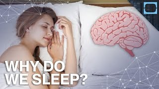 What's The Point of Sleeping?