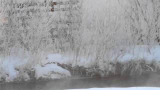 こちら道東は中標津(ナカシベツ)、2012年1月11日の朝。 気温は-20.3℃を確認...