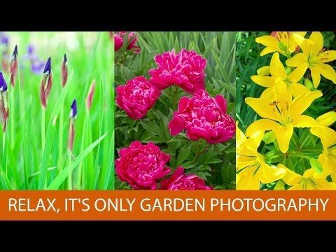 Relax, It's Only Garden Photography