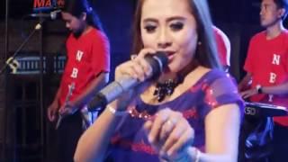 Bawang Merah Voc Niken Yra New Bintang Yenila Rembang 2016