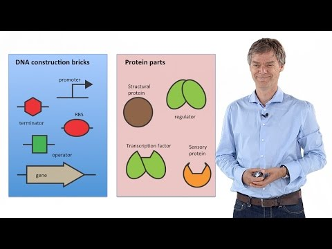 Synthetic Biology: Principles and Applications - Jan Roelof