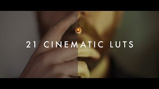 21 Cinematic LUTs Pack by Justin Odisho (Demo Reel + FREE Lut!)