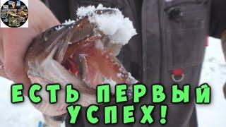 Зимняя рыбалка Ловля окуня на безмотылку Снимаем с донок и жерлиц первых щук Республика Коми