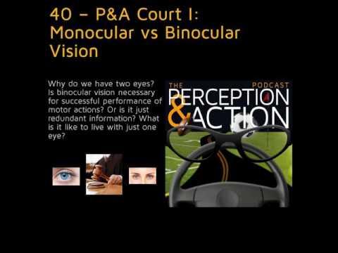 40 – P&A Court I: Monocular vs Binocular Vision