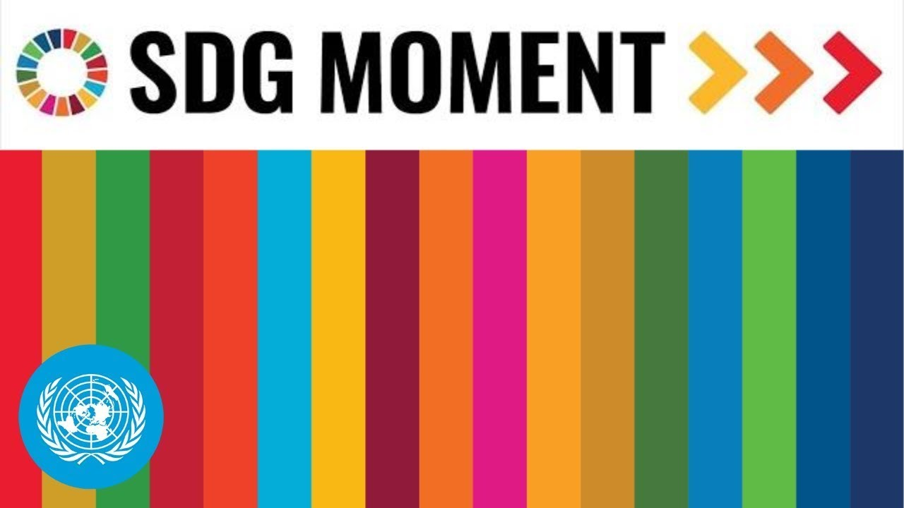 Download SDG Moment - BTS (방탄소년단), UN chief, General Assembly President & more | United Nations (AM Session)