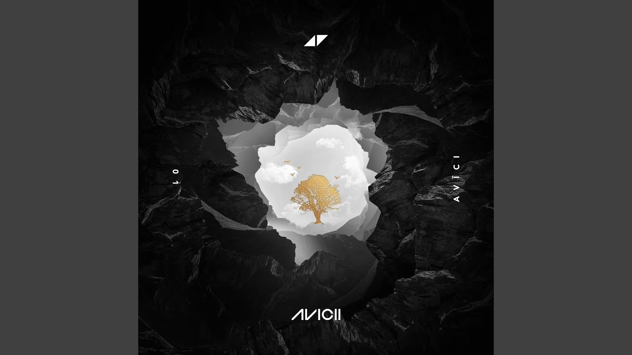 So Much Better (Avicii Remix)