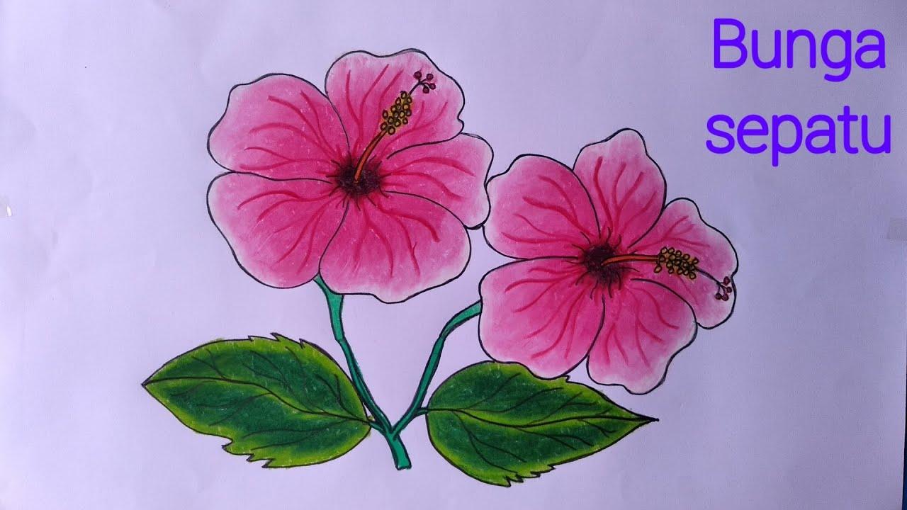 Cara Menggambar Bunga Sepatu Cara Menggambar Bunga Yang Mudah Dan Bagus Youtube