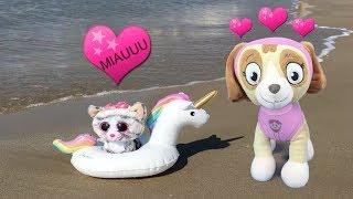 Patrulla canina español: fiesta paw patrol en la playa y cachorros salvan nuevo bebe gatito