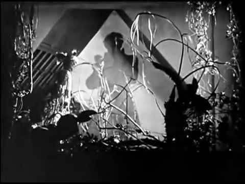 Warning Shadows (1923) - clip