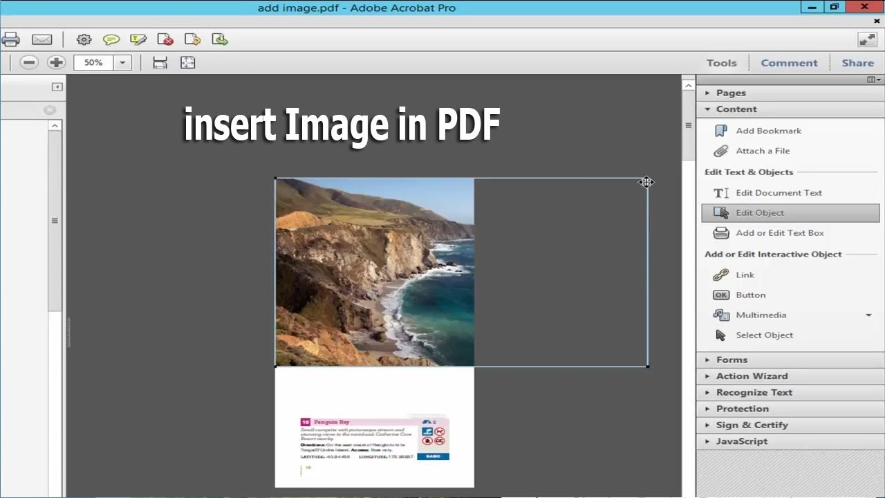 How To Add Or Insert Image In Pdf By Using Adobe Acrobat Pro Youtube