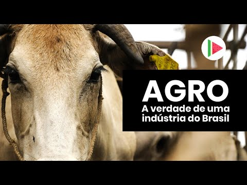 AGRO: A verdade de uma indústria do Brasil
