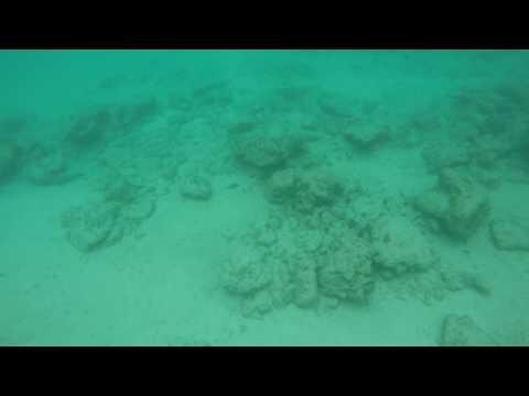 Snorkeling Near Anguilla 1
