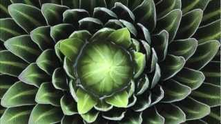 Have You Got It In You (Instrumental) - Imogen Heap