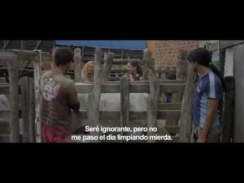 Trailer de Boi neon subtitulado en español (HD)