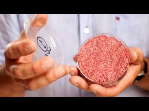 Growing Trend of 'Clean' Meat Offers Environmental Benefits