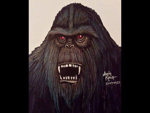 World Bigfoot Radio #28, Pt. 2 ~ It roared from 2 feet away!/Taylor