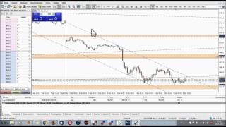 Einführung in den MT5 & Live Trading mit kleinem Startkapital