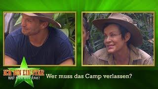 Dschungelcamp 2020   Wer muss an Tag 11 das Camp verlassen?