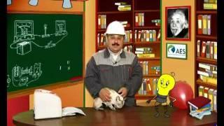 Уроки безопасности для детей. Выпуск №4.vob