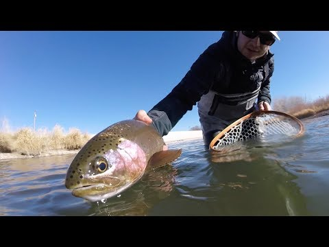 SubtleTakes, Fly Fishing The Arkansas River Pueblo Tailwater