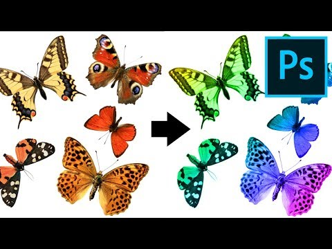 How To Create An Action In Adobe Photoshop