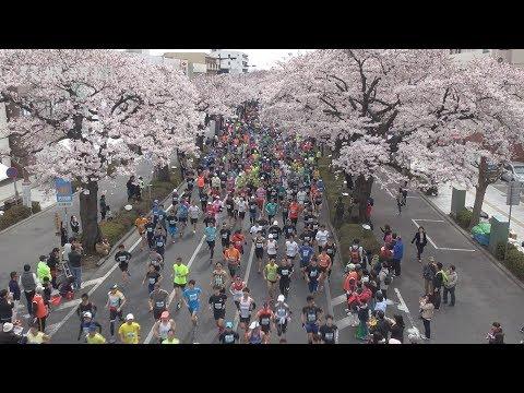 1万7千人健脚競う 日立さくらロードレース